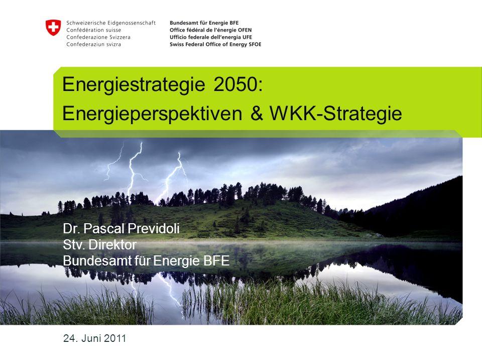 12 Endenergienachfrage nach Energieträgern, in PJ Energiestrategie 2050 Energieperspektiven & WKK-StrategieDoc 003907831 Dr.