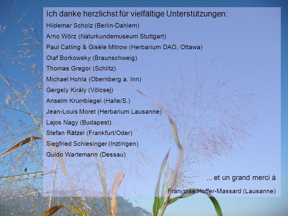 Ich danke herzlichst für vielfältige Unterstützungen: Hildemar Scholz (Berlin-Dahlem) Arno Wörz (Naturkundemuseum Stuttgart) Paul Catling & Gisèle Mitrow (Herbarium DAO, Ottawa) Olaf Borkowsky (Braunschweig) Thomas Gregor (Schlitz) Michael Hohla (Obernberg a.