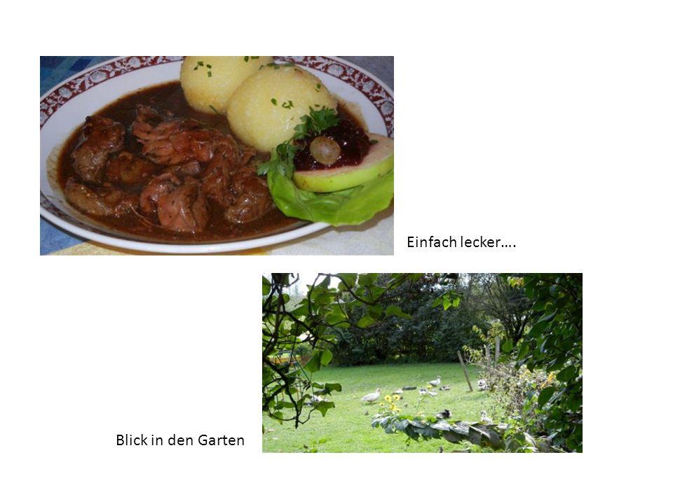Einfach lecker…. Blick in den Garten