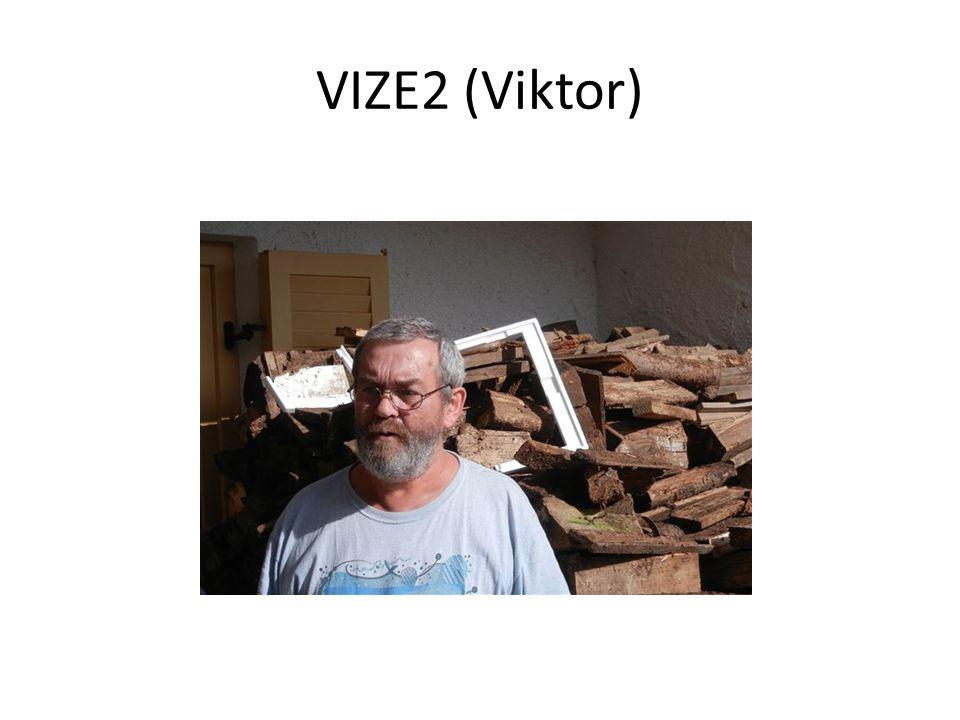 VIZE2 (Viktor)