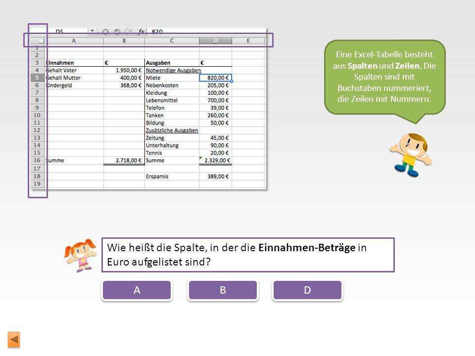Zuerst sollten wir uns einmal ansehen, wie eine typische Excel-Tabelle aussieht. Hier haben wir den Haushaltsplan der Familie Müller, den du vor ein p