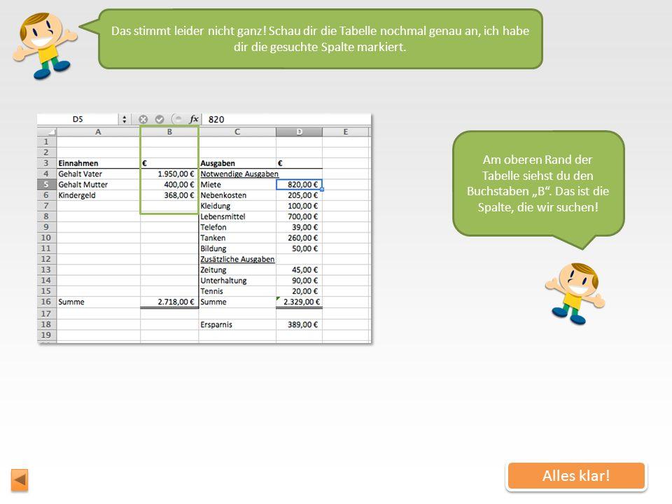 Eine Excel-Tabelle besteht aus Spalten und Zeilen. Die Spalten sind mit Buchstaben nummeriert, die Zeilen mit Nummern. Wie heißt die Spalte, in der di