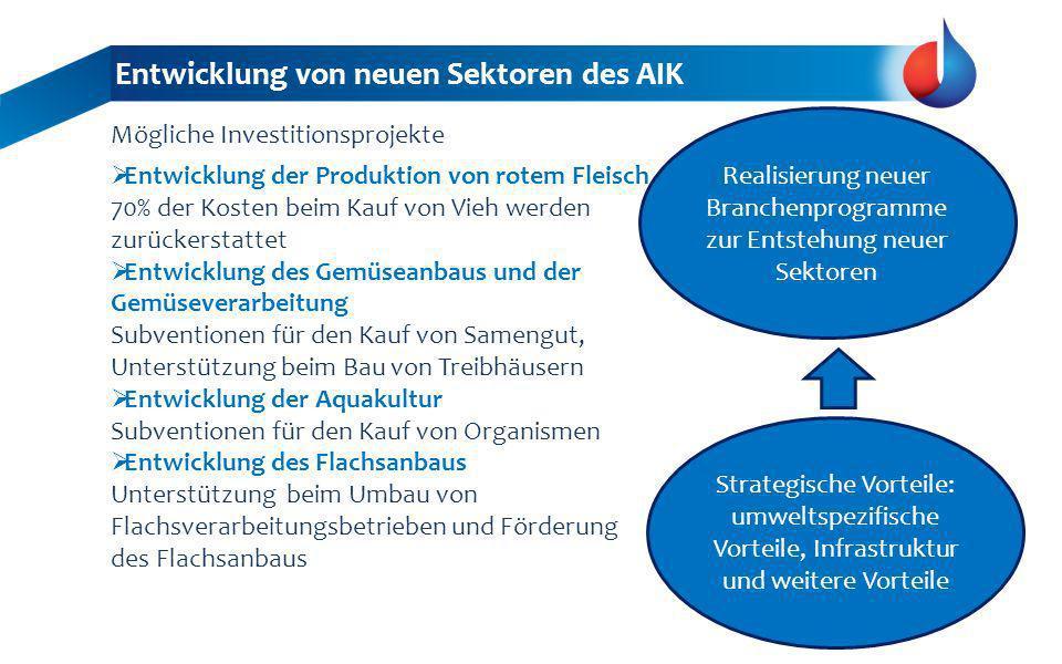 Entwicklung von neuen Sektoren des AIK Strategische Vorteile: umweltspezifische Vorteile, Infrastruktur und weitere Vorteile Realisierung neuer Branch