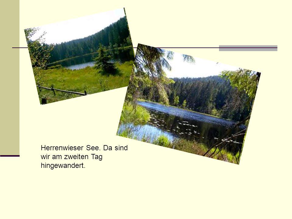 Herrenwieser See. Da sind wir am zweiten Tag hingewandert.