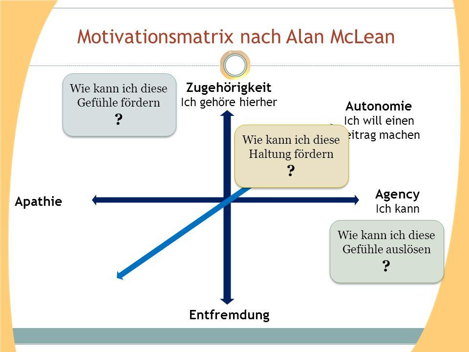 Motivationsmatrix nach Alan McLean Zugehörigkeit Ich gehöre hierher Agency Ich kann Entfremdung Apathie Autonomie Ich will einen Beitrag machen Wie ka
