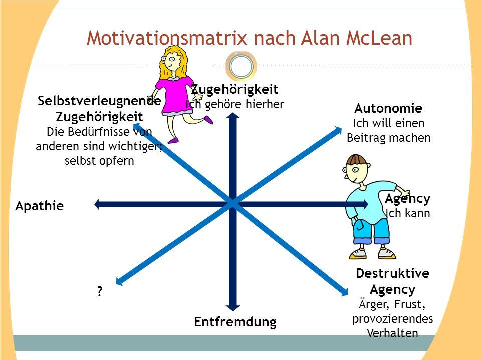 Motivationsmatrix nach Alan McLean Zugehörigkeit Ich gehöre hierher Agency Ich kann Entfremdung Apathie Autonomie Ich will einen Beitrag machen Selbst