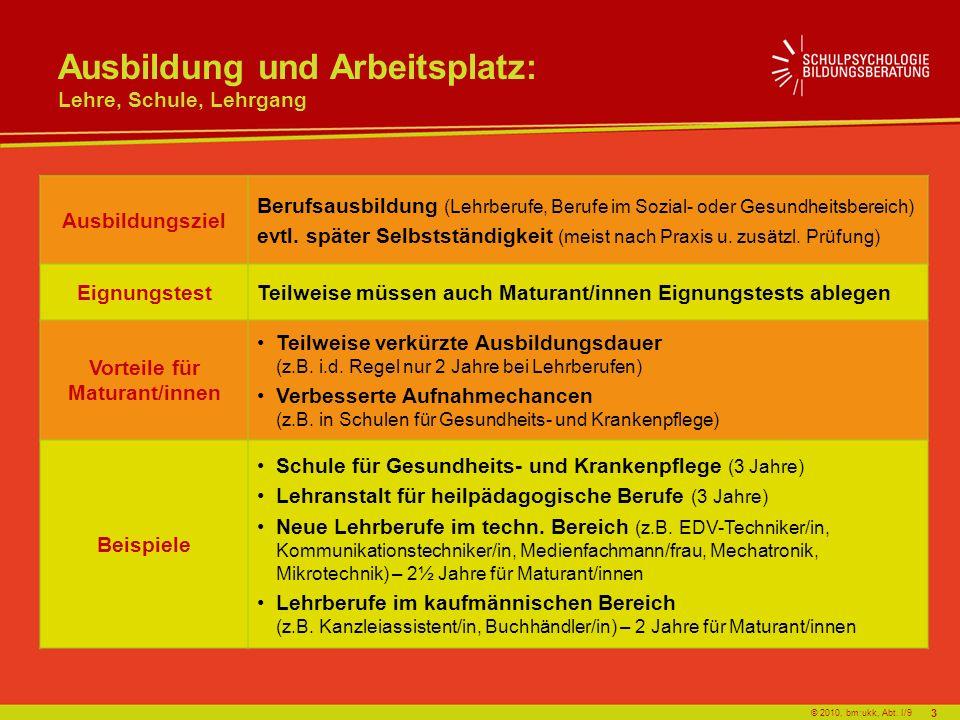 © 2010, bm:ukk, Abt. I/9 Ausbildungsziel Berufsausbildung (Lehrberufe, Berufe im Sozial- oder Gesundheitsbereich) evtl. später Selbstständigkeit (meis