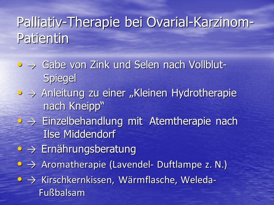 Palliativ-Therapie bei Ovarial-Karzinom- Patientin Gabe von Zink und Selen nach Vollblut- Spiegel Gabe von Zink und Selen nach Vollblut- Spiegel Anlei