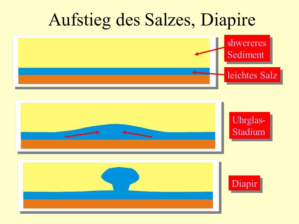 Aufstieg des Salzes, Diapire leichtes Salz shwereres Sediment shwereres Sediment Uhrglas- Stadium Uhrglas- Stadium Diapir