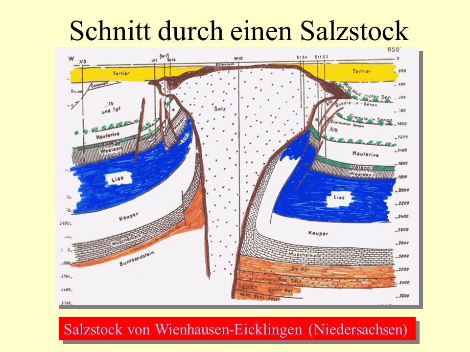 Schnitt durch einen Salzstock Salzstock von Wienhausen-Eicklingen (Niedersachsen)