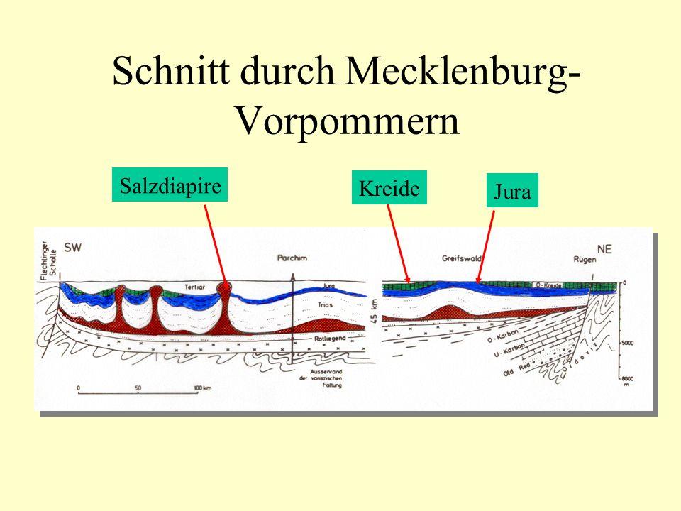 Schnitt durch Mecklenburg- Vorpommern Jura Kreide Salzdiapire