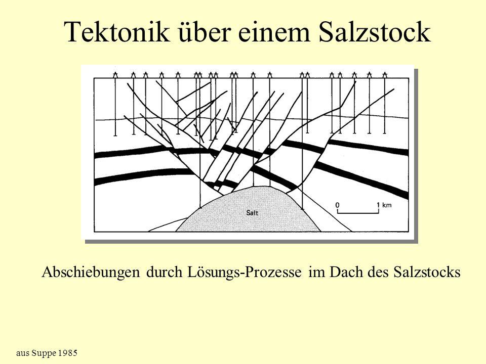 Tektonik über einem Salzstock Abschiebungen durch Lösungs-Prozesse im Dach des Salzstocks aus Suppe 1985