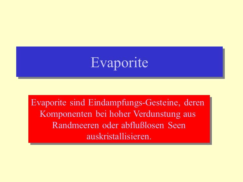 Evaporite Evaporite sind Eindampfungs-Gesteine, deren Komponenten bei hoher Verdunstung aus Randmeeren oder abflußlosen Seen auskristallisieren. Evapo
