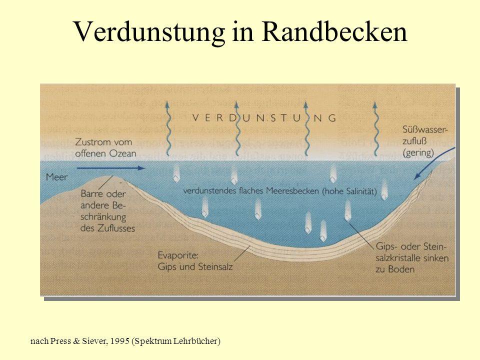 Verdunstung in Randbecken nach Press & Siever, 1995 (Spektrum Lehrbücher)
