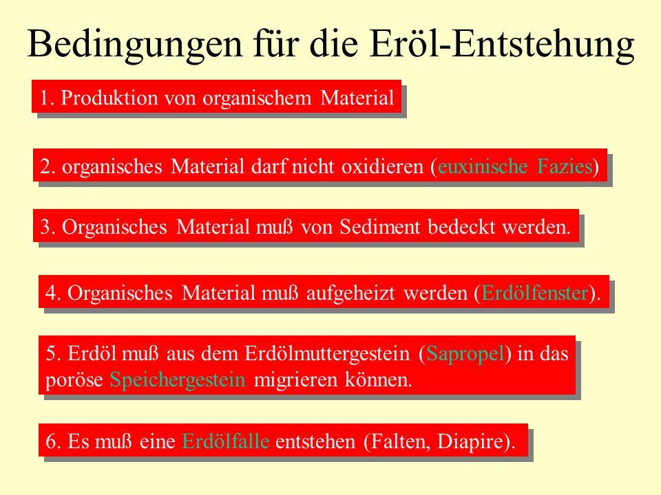 Bedingungen für die Eröl-Entstehung 1. Produktion von organischem Material 2. organisches Material darf nicht oxidieren (euxinische Fazies) 3. Organis