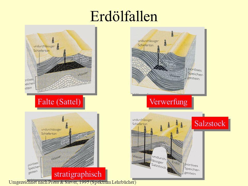 Erdölfallen Falte (Sattel) Verwerfung stratigraphisch Salzstock Umgezeichnet nach Press & Siever, 1995 (Spektrum Lehrbücher)