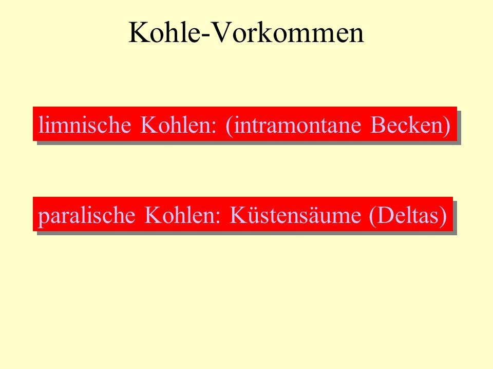 Kohle-Vorkommen limnische Kohlen: (intramontane Becken) paralische Kohlen: Küstensäume (Deltas)