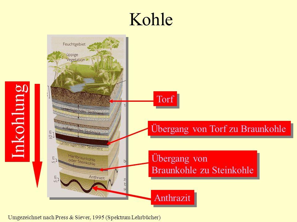 Kohle Torf Übergang von Torf zu Braunkohle Übergang von Braunkohle zu Steinkohle Übergang von Braunkohle zu Steinkohle Anthrazit Umgezeichnet nach Pre