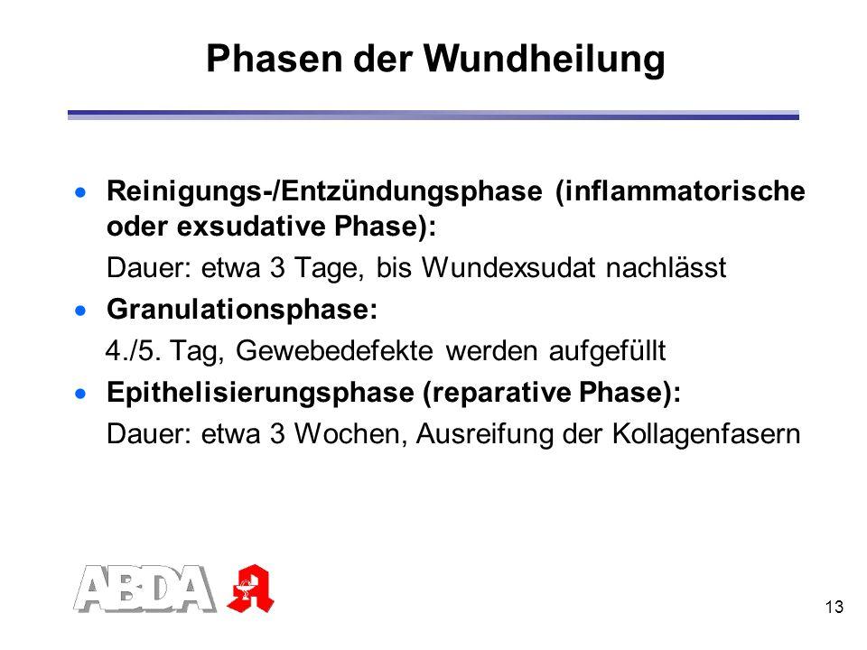 13 Phasen der Wundheilung Reinigungs-/Entzündungsphase (inflammatorische oder exsudative Phase): Dauer: etwa 3 Tage, bis Wundexsudat nachlässt Granula