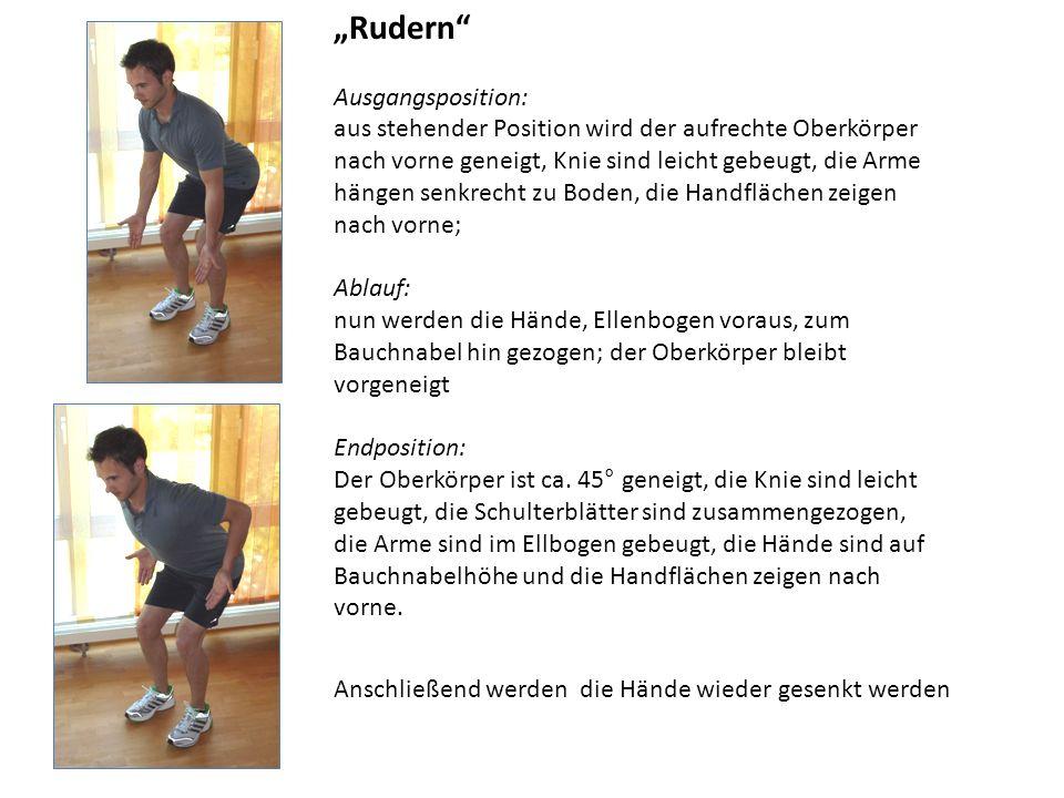 Rudern Ausgangsposition: aus stehender Position wird der aufrechte Oberkörper nach vorne geneigt, Knie sind leicht gebeugt, die Arme hängen senkrecht