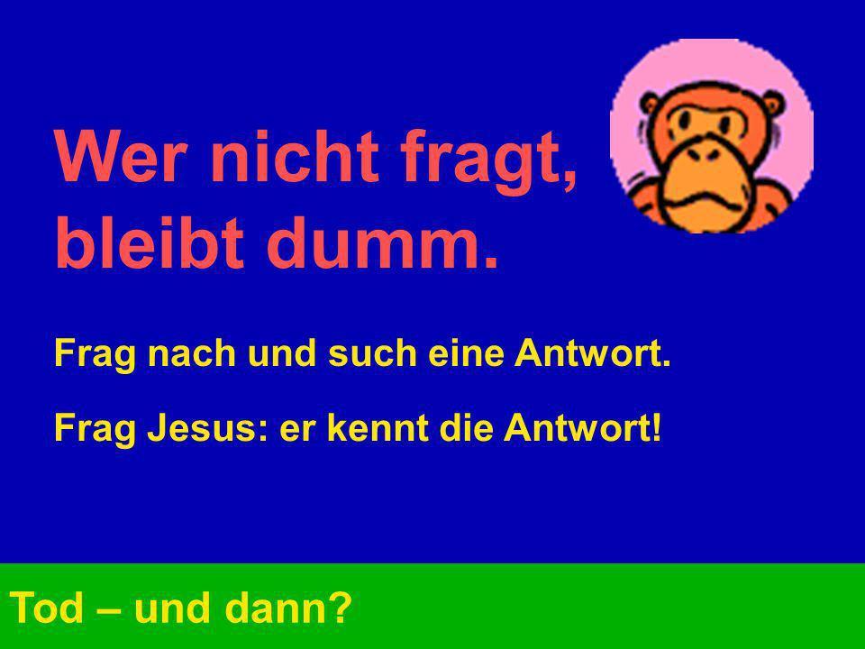Wer nicht fragt, bleibt dumm. Tod – und dann? Frag nach und such eine Antwort. Frag Jesus: er kennt die Antwort!