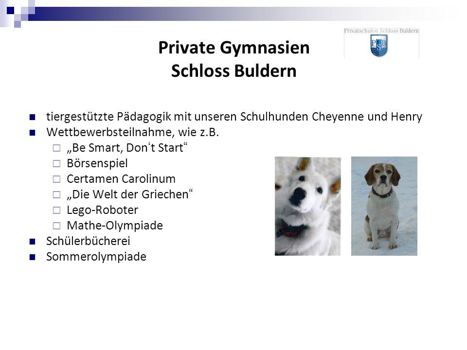 tiergestützte Pädagogik mit unseren Schulhunden Cheyenne und Henry Wettbewerbsteilnahme, wie z.B. Be Smart, Dont Start Börsenspiel Certamen Carolinum