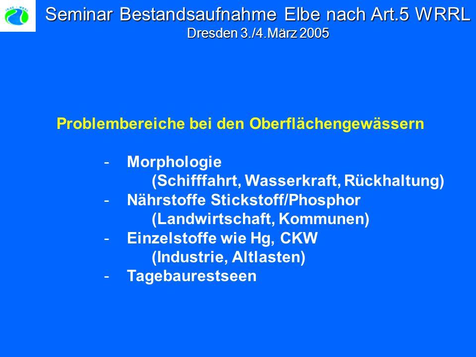 Seminar Bestandsaufnahme Elbe nach Art.5 WRRL Dresden 3./4.März 2005 Problembereiche bei den Oberflächengewässern - Morphologie (Schifffahrt, Wasserkraft, Rückhaltung) - Nährstoffe Stickstoff/Phosphor (Landwirtschaft, Kommunen) - Einzelstoffe wie Hg, CKW (Industrie, Altlasten) - Tagebaurestseen