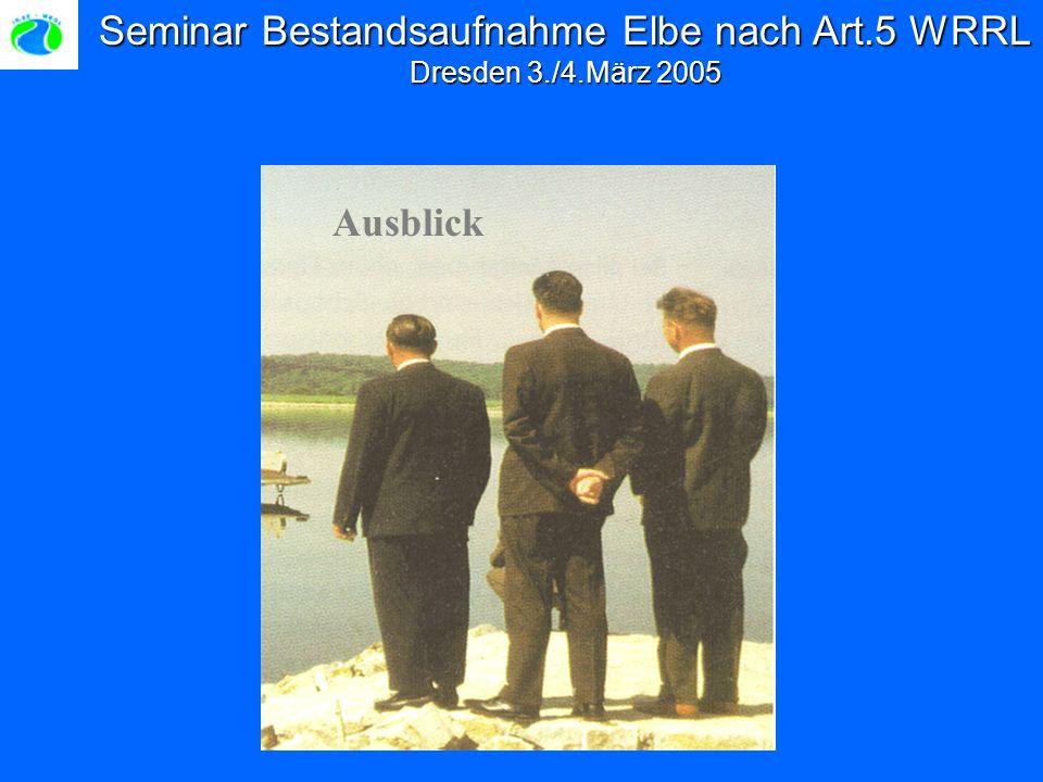 Seminar Bestandsaufnahme Elbe nach Art.5 WRRL Dresden 3./4.März 2005 Ausblick