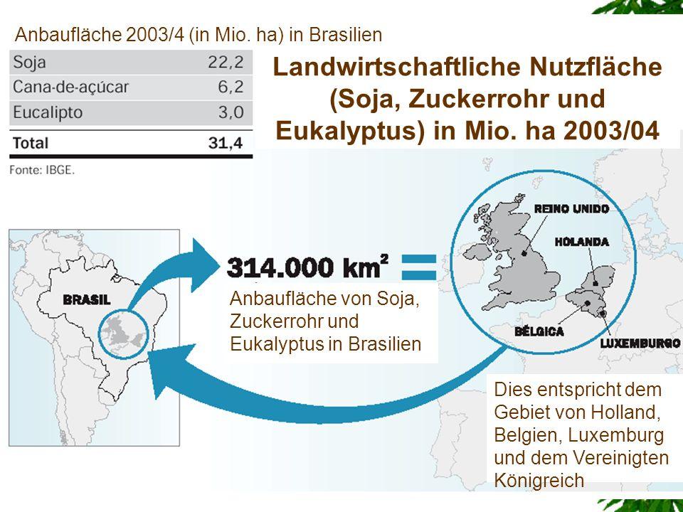 Anbaufläche 2003/4 (in Mio. ha) in Brasilien Anbaufläche von Soja, Zuckerrohr und Eukalyptus in Brasilien Dies entspricht dem Gebiet von Holland, Belg