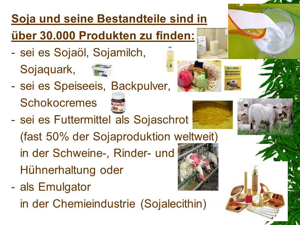 Soja und seine Bestandteile sind in über 30.000 Produkten zu finden: -sei es Sojaöl, Sojamilch, Sojaquark, -sei es Speiseeis, Backpulver, Schokocremes