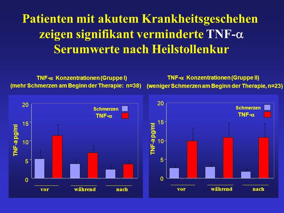 Patienten mit akutem Krankheitsgeschehen zeigen signifikant verminderte TNF- Serumwerte nach Heilstollenkur TNF- Konzentrationen (Gruppe I) (mehr Schmerzen am Beginn der Therapie: n=38) 0 5 10 15 20 Schmerzen TNF-a pg/ml vorwährendnach TNF- Konzentrationen (Gruppe II) (weniger Schmerzen am Beginn der Therapie, n=23) 0 5 10 15 20 TNF-a pg/ml TNF- Schmerzen TNF- vorwährendnach