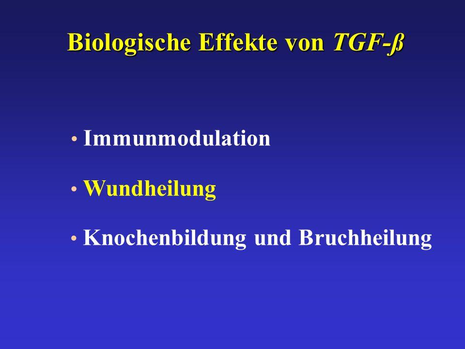 Biologische Effekte von TGF-ß Immunmodulation Wundheilung Knochenbildung und Bruchheilung