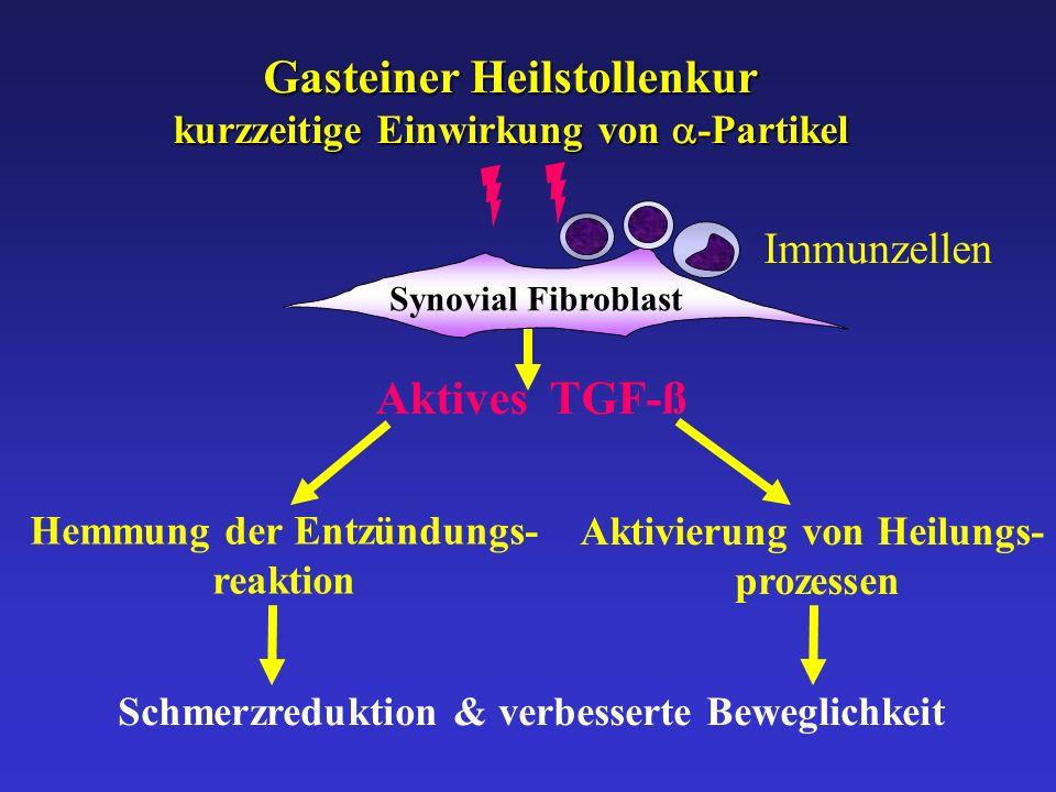 Aktives TGF-ß Hemmung der Entzündungs- reaktion Aktivierung von Heilungs- prozessen Schmerzreduktion & verbesserte Beweglichkeit Synovial Fibroblast G