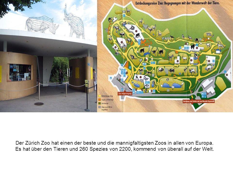 Der Zürich Zoo hat einen der beste und die mannigfaltigsten Zoos in allen von Europa.