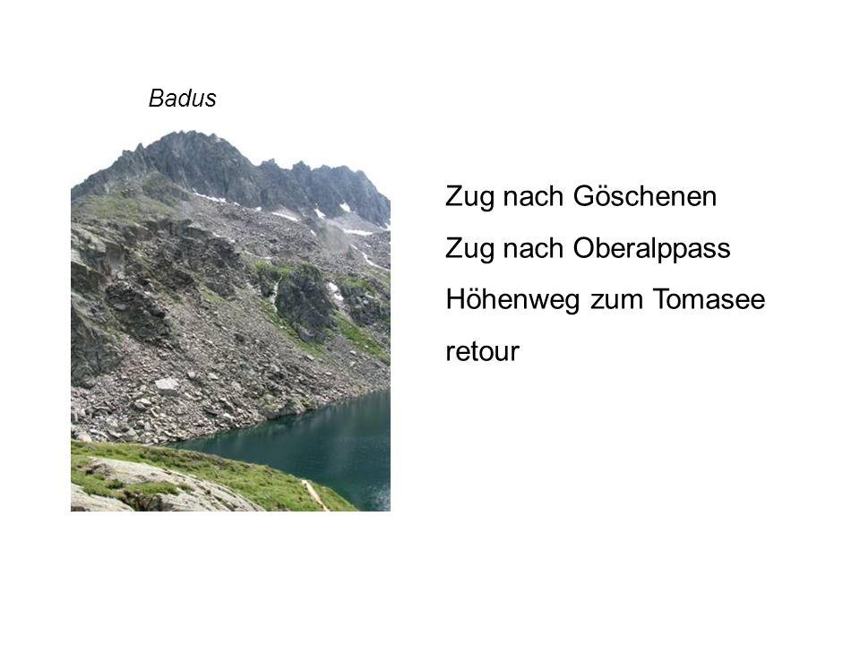 Zug nach Göschenen Zug nach Oberalppass Höhenweg zum Tomasee retour Badus