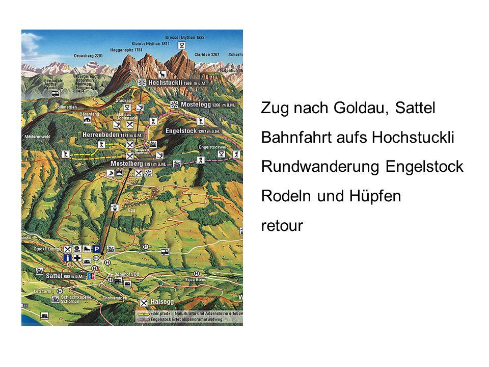 Zug nach Goldau, Sattel Bahnfahrt aufs Hochstuckli Rundwanderung Engelstock Rodeln und Hüpfen retour