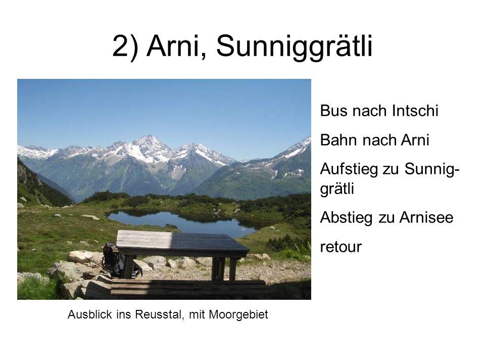 2) Arni, Sunniggrätli Bus nach Intschi Bahn nach Arni Aufstieg zu Sunnig- grätli Abstieg zu Arnisee retour Ausblick ins Reusstal, mit Moorgebiet
