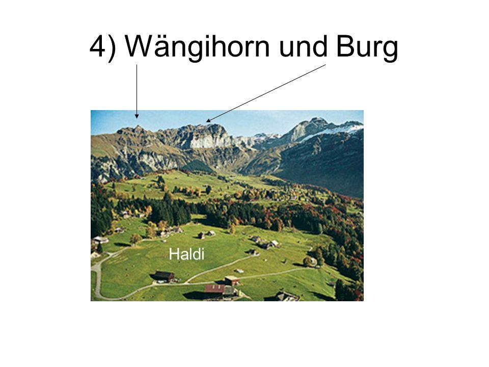 4) Wängihorn und Burg Haldi