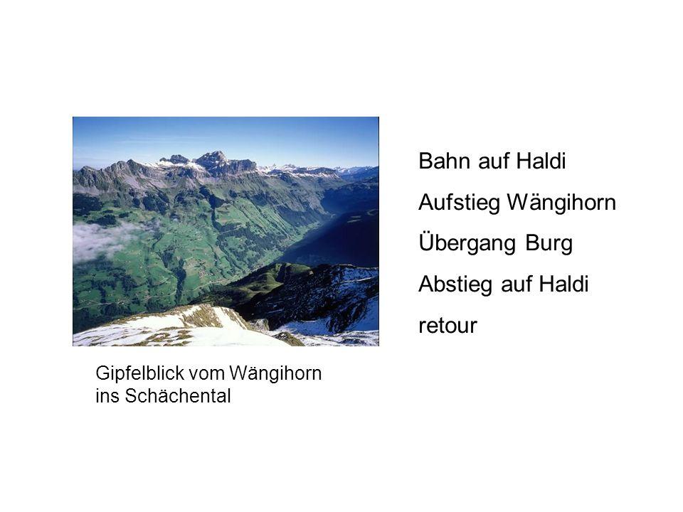 Gipfelblick vom Wängihorn ins Schächental Bahn auf Haldi Aufstieg Wängihorn Übergang Burg Abstieg auf Haldi retour