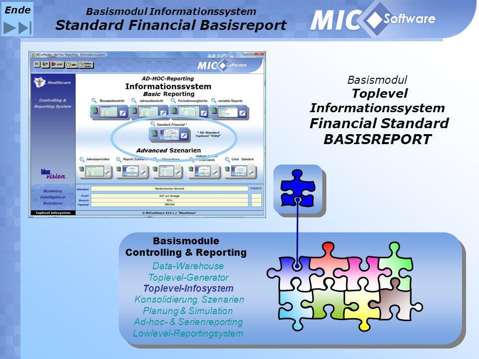 Basismodul Toplevel Informationssystem Financial Standard BASISREPORT Data-Warehouse Toplevel-Generator Toplevel-Infosystem Konsolidierung, Szenarien