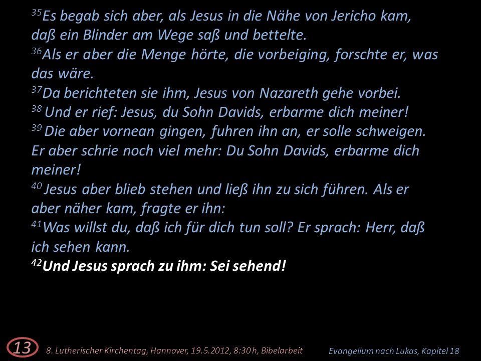 35 Es begab sich aber, als Jesus in die Nähe von Jericho kam, daß ein Blinder am Wege saß und bettelte. 36 Als er aber die Menge hörte, die vorbeiging