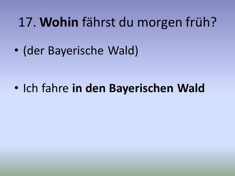 17. Wohin fährst du morgen früh? (der Bayerische Wald) Ich fahre in den Bayerischen Wald