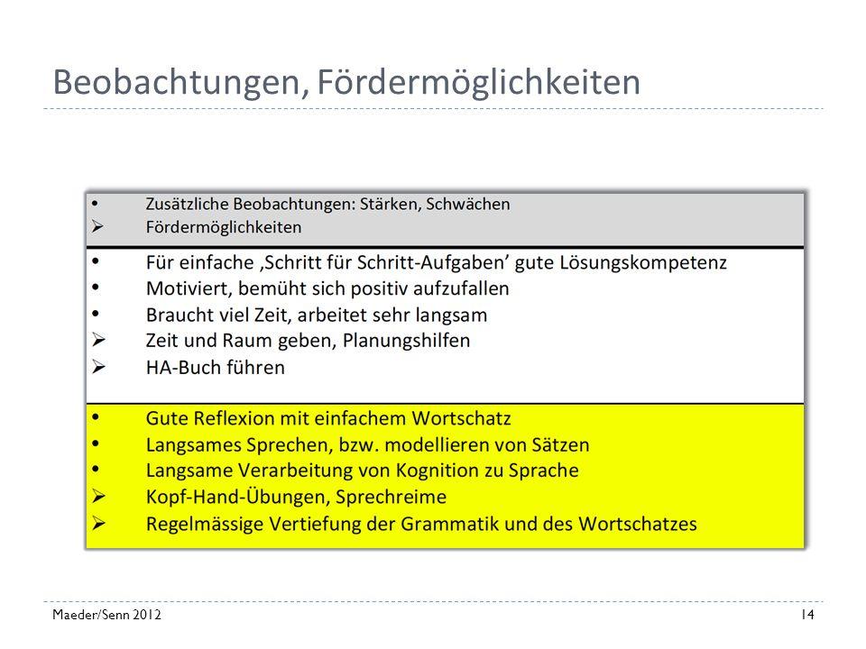 Einschätzung der Aktivitäten 13Maeder/Senn 2012