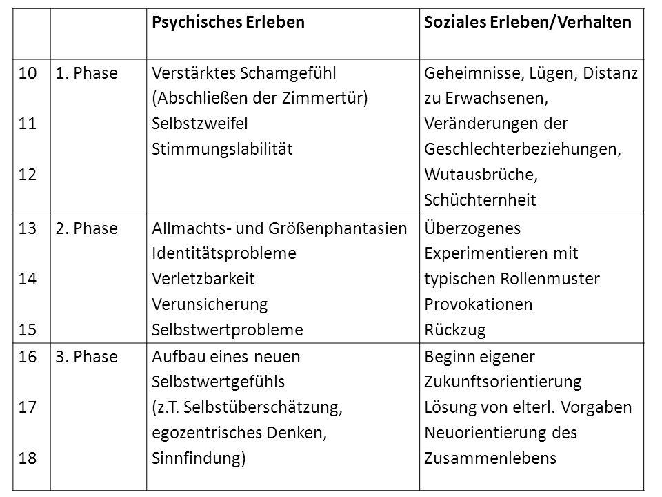 Psychisches Erleben Soziales Erleben/Verhalten 10 11 12 1. Phase Verstärktes Schamgefühl (Abschließen der Zimmertür) Selbstzweifel Stimmungslabilität