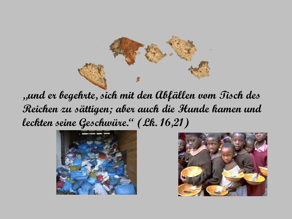und er begehrte, sich mit den Abfällen vom Tisch des Reichen zu sättigen; aber auch die Hunde kamen und leckten seine Geschwüre. (Lk. 16,21)