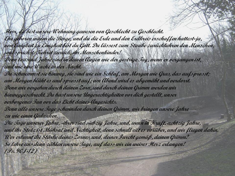 Gewissheit der Auferstehung Beweisführung: Ordnung (V.