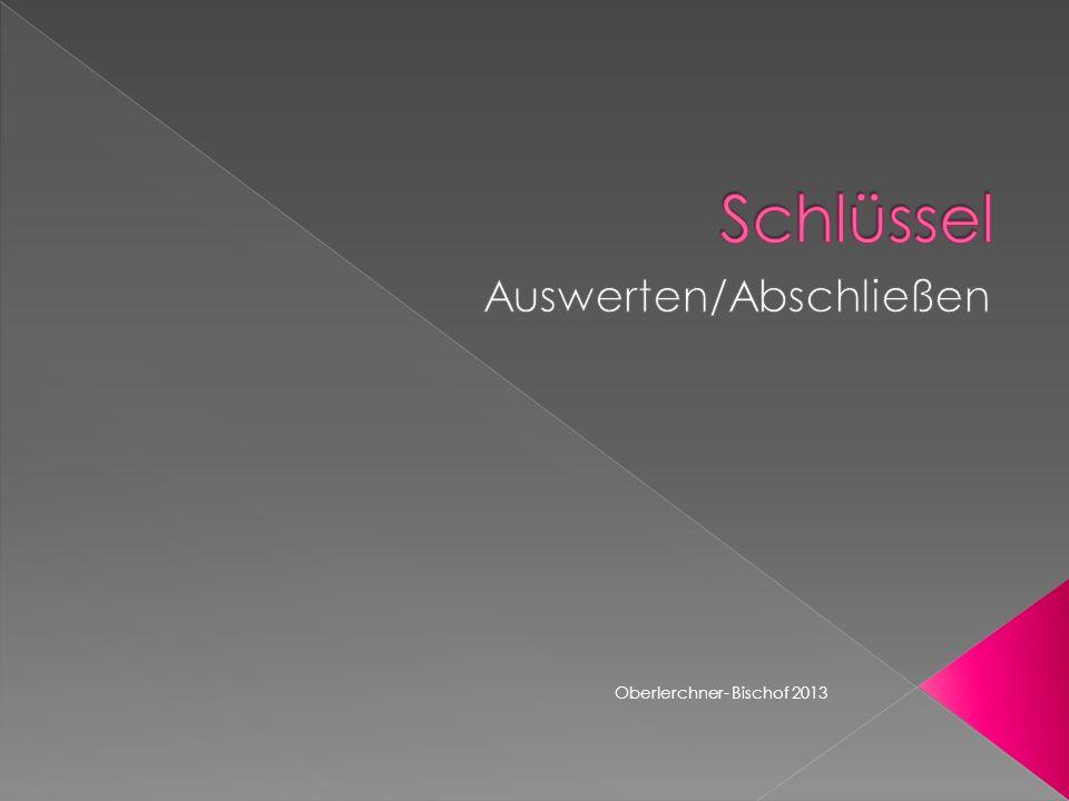 Oberlerchner- Bischof 2013