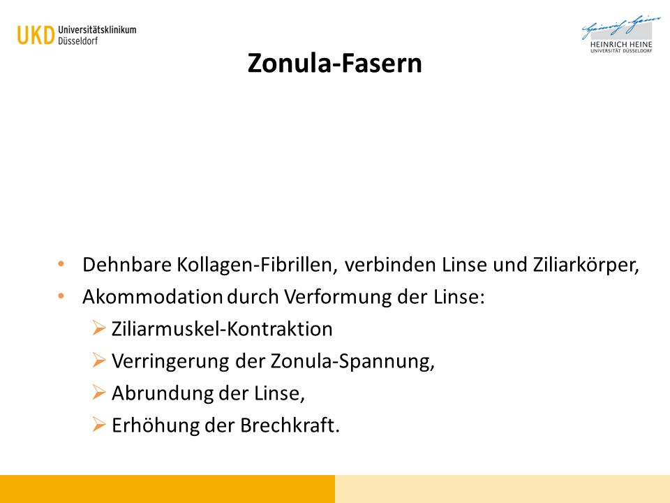Zonula-Fasern Dehnbare Kollagen-Fibrillen, verbinden Linse und Ziliarkörper, Akommodation durch Verformung der Linse: Ziliarmuskel-Kontraktion Verring