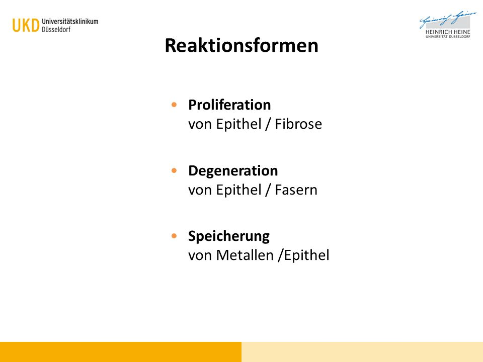 Reaktionsformen Proliferation von Epithel / Fibrose Degeneration von Epithel / Fasern Speicherung von Metallen /Epithel