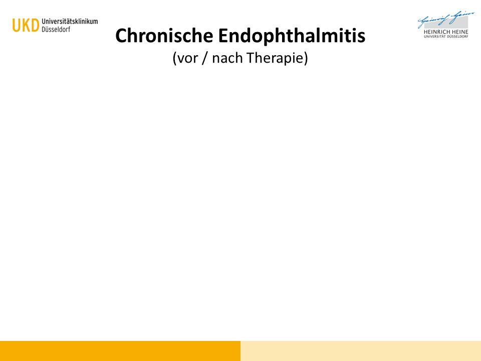 Chronische Endophthalmitis (vor / nach Therapie)